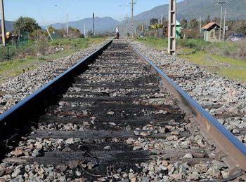 """¿Más trenes para Chile?: Expertos aseguran que hay """"potencial que no se aprovecha"""" para el transporte de carga"""